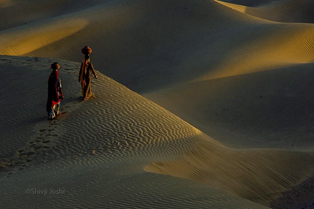 desert-12