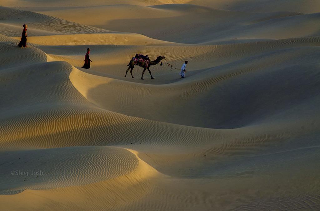 desert-13