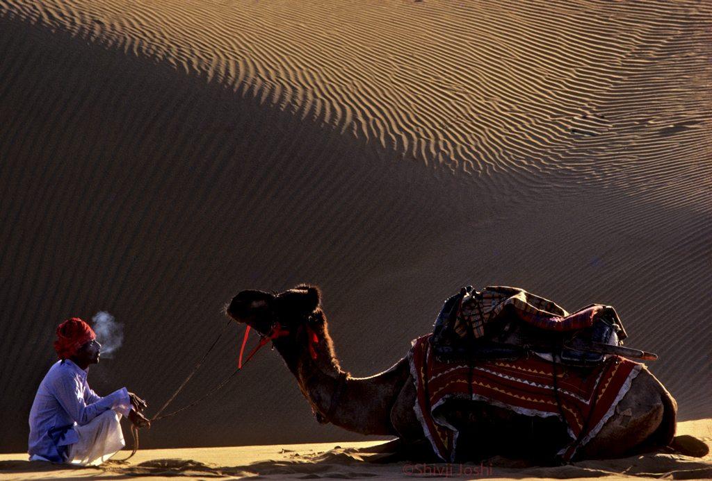 desert-14