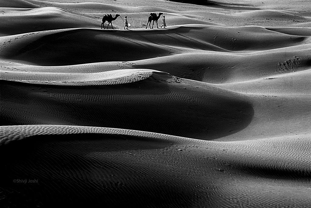 desert-16